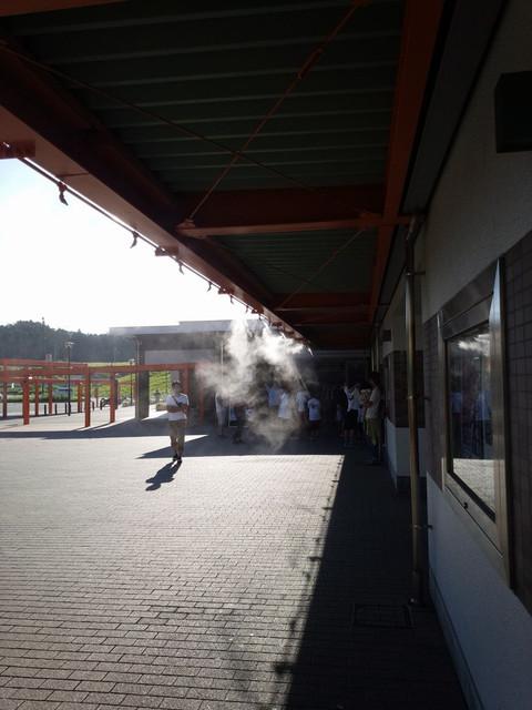Tsuchitamasa2