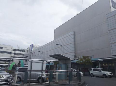 Wakayamasta