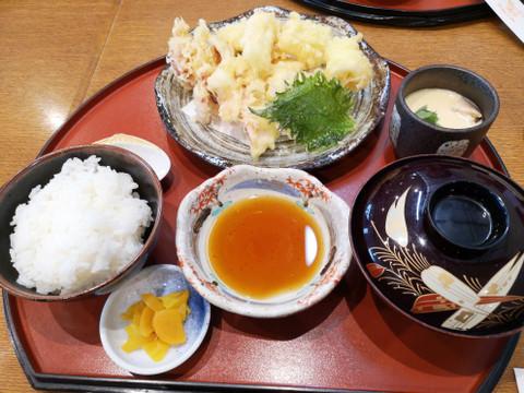 Ikateishoku