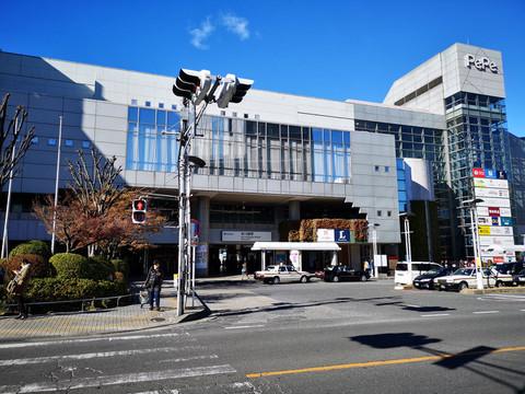 Honkawagoe1