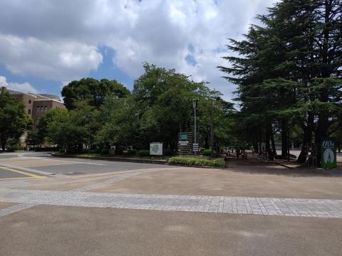 Tsurumai2