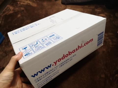 Yodobashi1