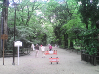 雨上がりの下鴨神社