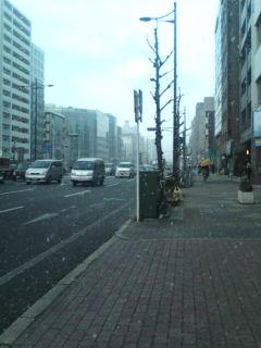 雪が舞い散る京都市内