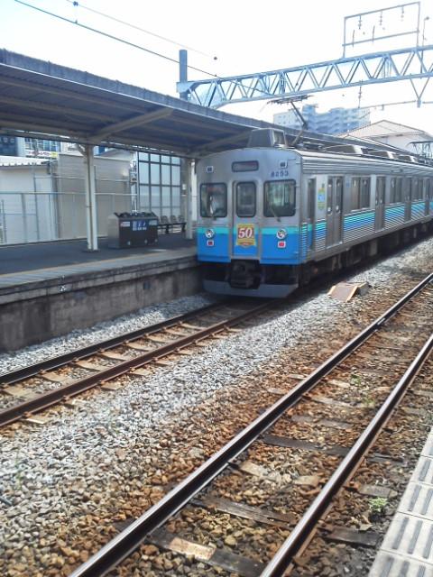 伊豆急の普通電車