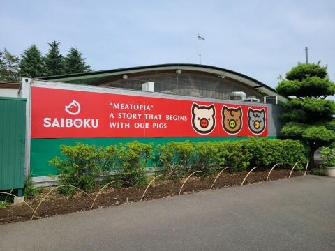 Saiboku1