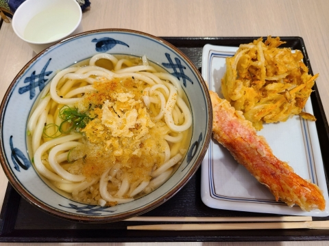 Udon_20210508211201